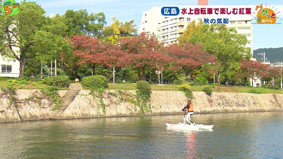 紅葉と水上自転車