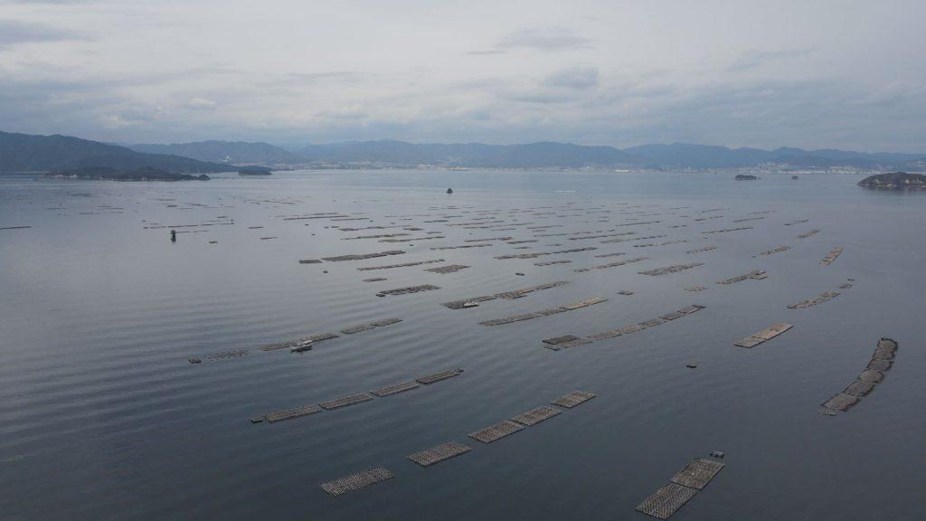 広島湾のカキいかだ