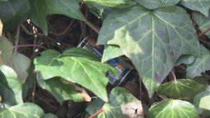 歩道に捨ててあった空き缶