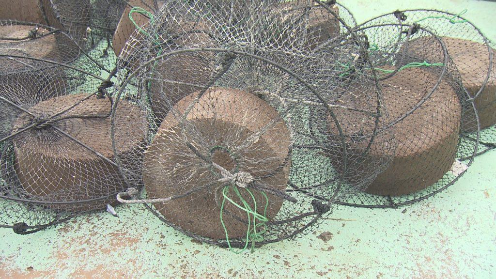鶏のフンが原料の有機肥料
