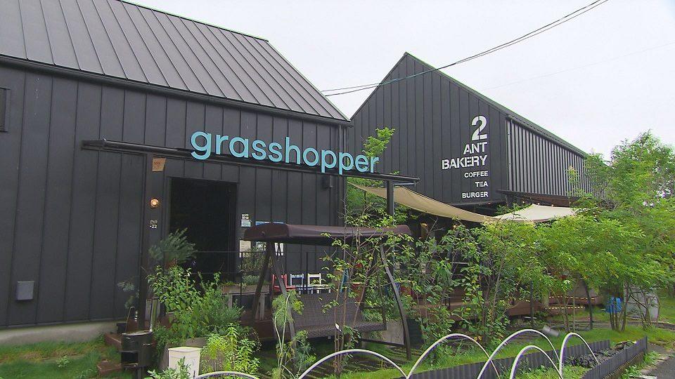 grasshopper café ANT BAKERY