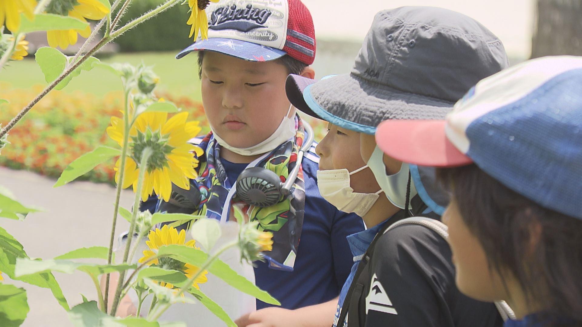 広島市植物公園にて