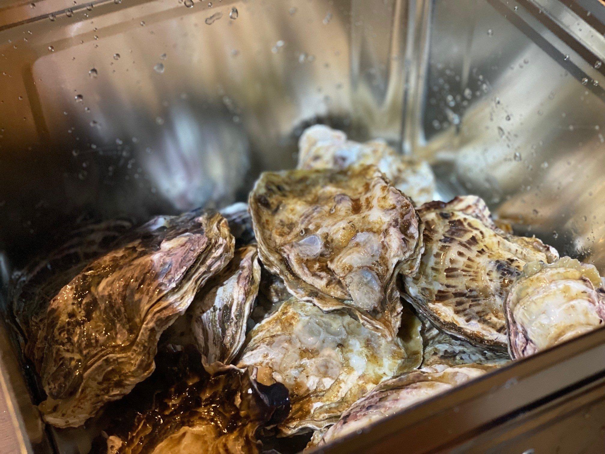 殻付き牡蠣がたっぷり