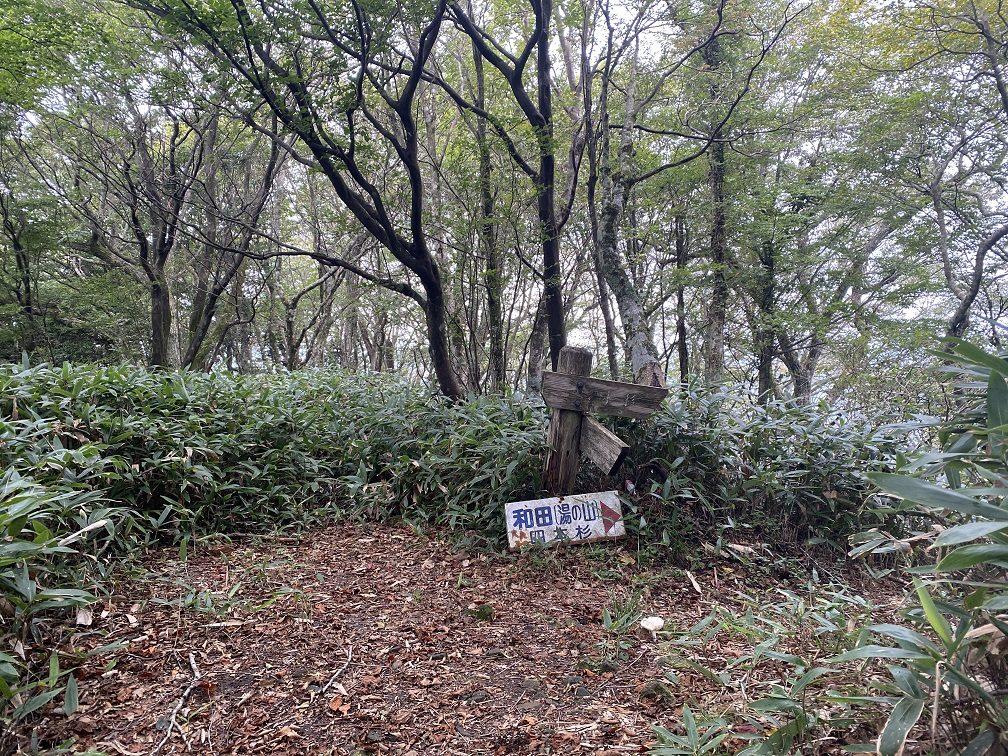 東郷山頂上。展望はありません