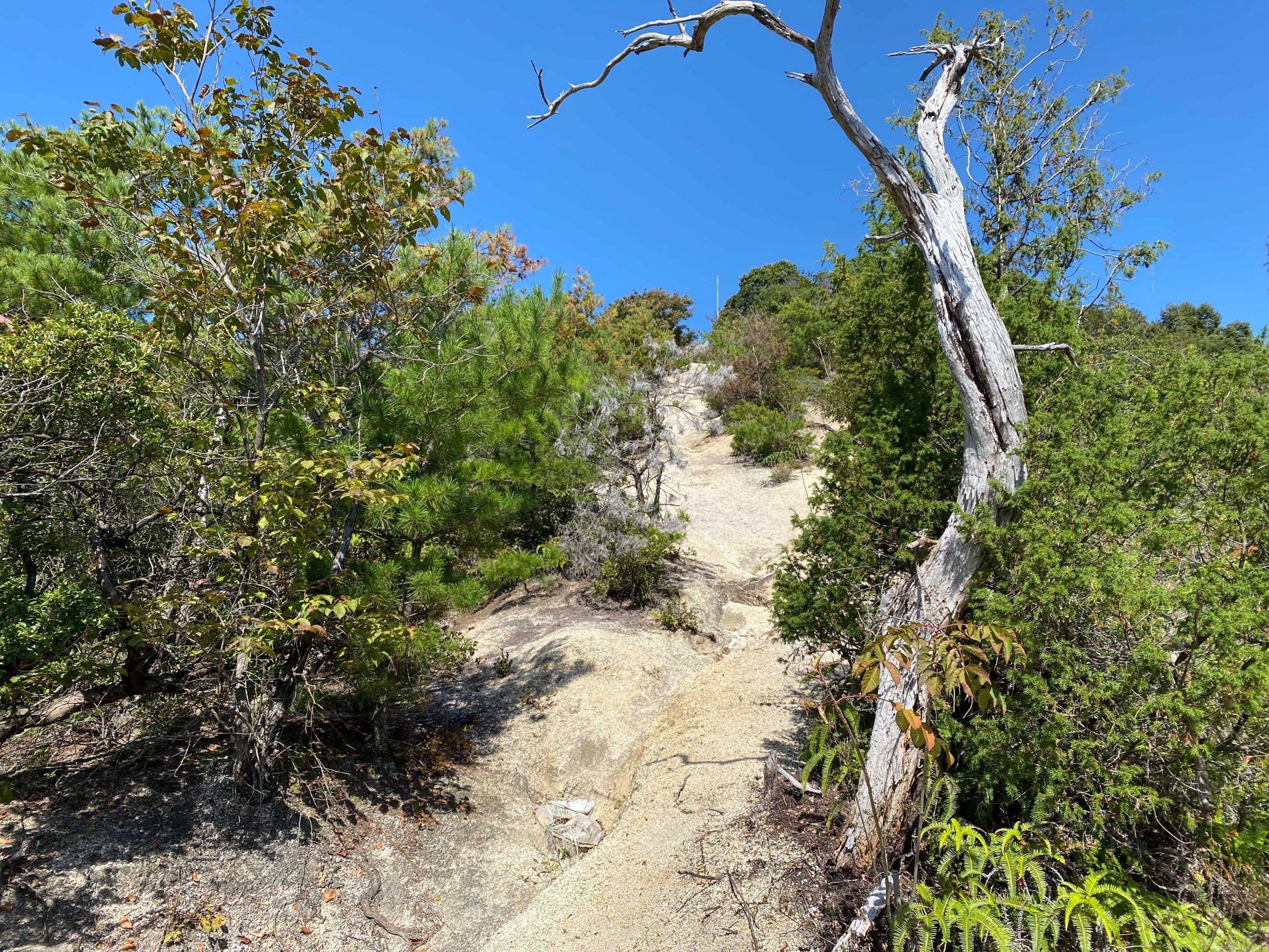 風化した花崗岩の道はよく滑る