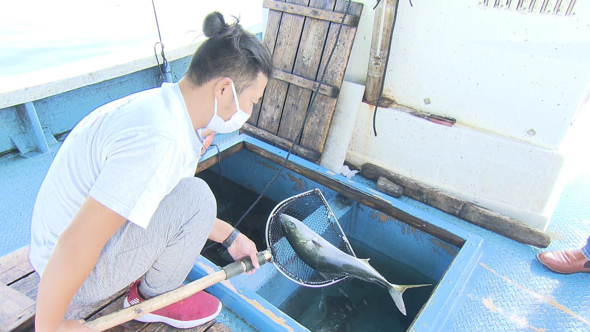 島の漁師さんから直接仕入れる新鮮な旬の魚