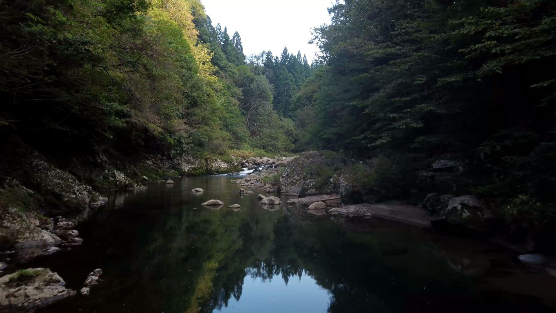 太田川の源流近く(廿日市市吉和)