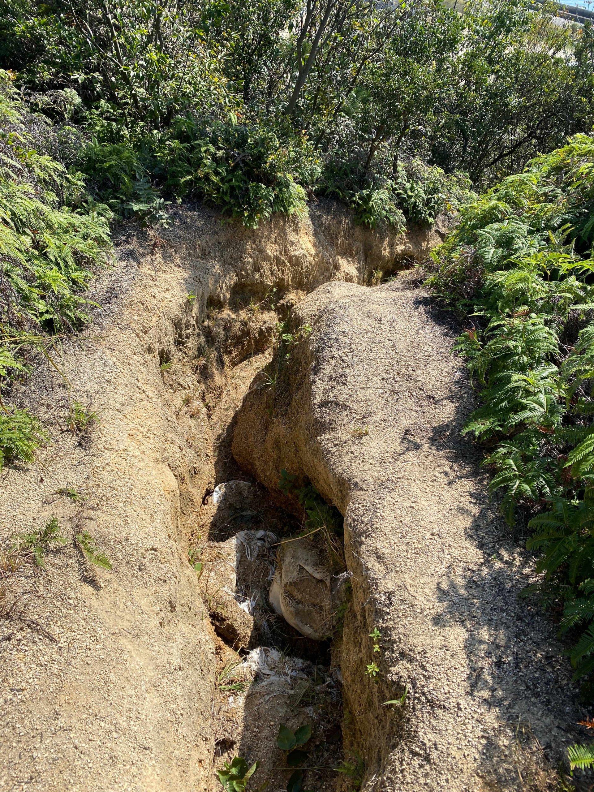 浸食されて樋のようになった登山道